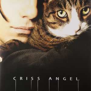 POSTER CA WITH CAT LARGE 24X36-0